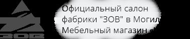 ЗОВ в Могилеве